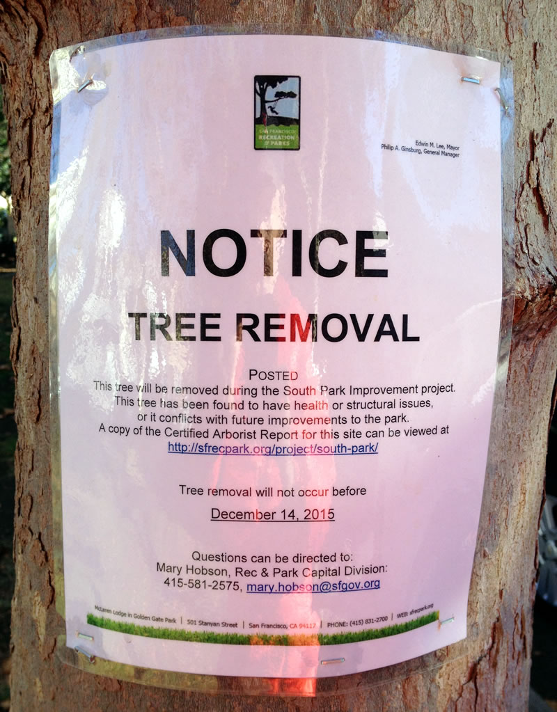 South Park Improvement Project Tree Tag