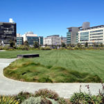 New Mission Bay Park Now Open for Picnicking and Play